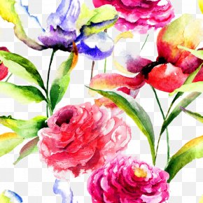 Beautiful Watercolor Flowers Background - Watercolor Painting Flower Peony PNG