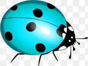 Blue Bug Cliparts - Marinette Dupain-Cheng Beetle Ladybird Clip Art PNG