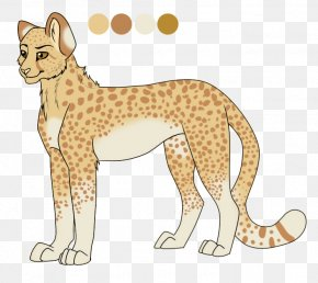 Cheetah - Cheetah Leopard Whiskers Lion Cat PNG