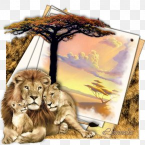 Lion - Lion Family Tiger Felidae Cat PNG