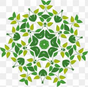 Floral Vector - Flower Logo Floral Design PNG
