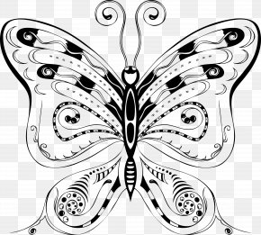 Business Exquisite Album Design Vector Material - Butterfly Insect Bee PNG