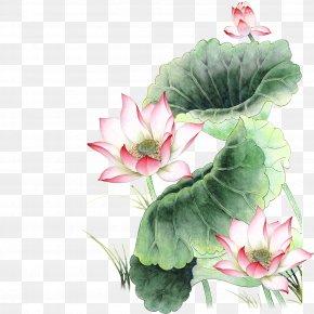 Lotus - Nelumbo Nucifera Pink Icon PNG