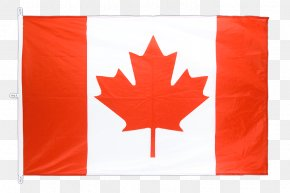 Canada - National Flag Of Canada Day Maple Leaf PNG