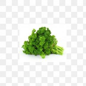 Vegetable - Organic Food Vegetable Fruit Salad PNG