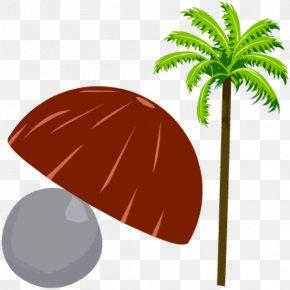 Coconut Shell - Leaf Product Design Clip Art Plant Stem PNG