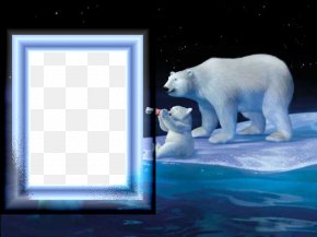Polar Bear Photo Frame - Coca-Cola Baby Polar Bear PNG