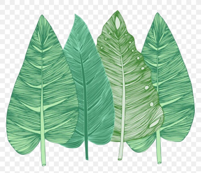 Leaf Desktop Wallpaper, PNG, 900x777px, Leaf, Maple Leaf, Mobile Phones, Plant Download Free