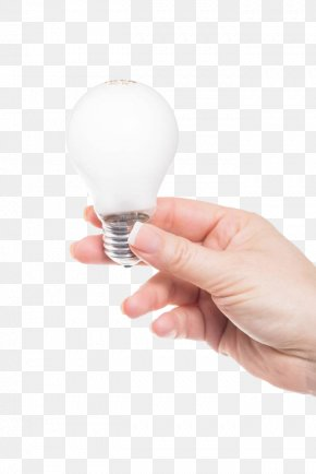 Holding The Light Bulb - Incandescent Light Bulb Computer File PNG