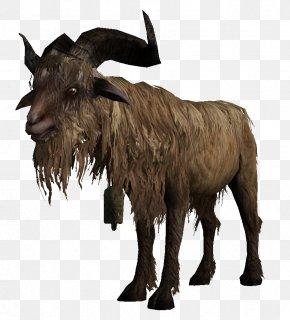 Goat - Goat Barbary Sheep Cattle The Elder Scrolls V: Skyrim PNG