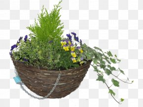 Hanging Basket - Hare Hatch Sheeplands Garden Flowerpot Nursery Hanging Basket PNG