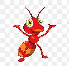 Red Ants Leader - Ant Adobe Illustrator Illustration PNG