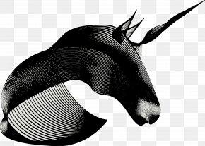 Abstract Artwork FIG. - Visual Arts Drawing Illustrator Digital Illustration Illustration PNG