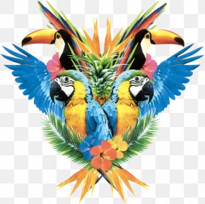 Parrot,Bako - Pug Macaw Parrot Icon PNG