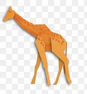 Giraffe Origami - Northern Giraffe Origami Animal Illustration PNG
