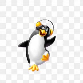 Penguin - Penguin Dance Clip Art PNG