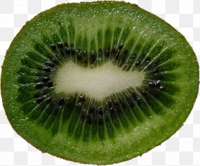 Green Cutted Kiwi Image - Actinidia Deliciosa Actinidia Chinensis Kiwifruit Seed PNG