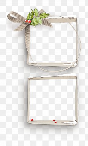 Paper Product Paper - Rectangle Plant Paper Paper Product PNG