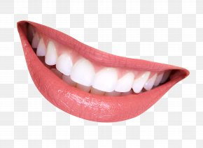 Smile Mouth - Tooth Smile Lip PNG