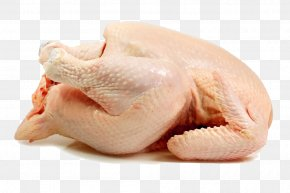 Chicken - Chicken Broiler Turkey Meat Poultry PNG