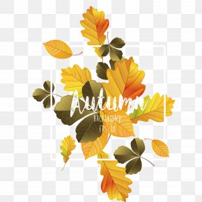 Autumn Leaves Poster Design Material - Calendula Officinalis Common Sunflower Yellow Pattern PNG