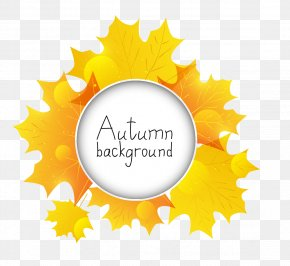 Autumn Background Elements - Autumn Leaves Leaf PNG