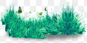 Beautiful Butterfly And Lawn - Butterfly Lawn Download PNG