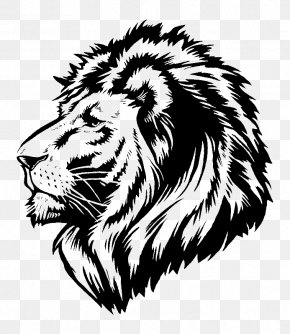 Lion - Lion Wall Decal Sticker Polyvinyl Chloride PNG