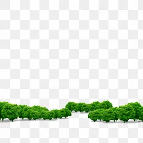 Tree - Download Computer File PNG