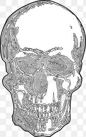 Skull Print - Drawing Visual Arts PNG
