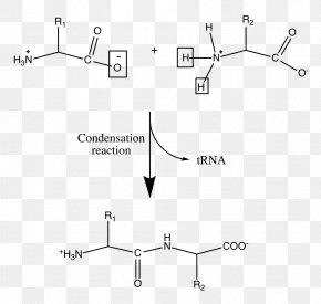 Condensation - Condensation Liquid Natural-gas Condensate Phase PNG
