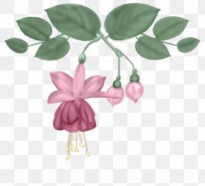 Flower,purple - Floral Design Flower Leaf Follaje PNG
