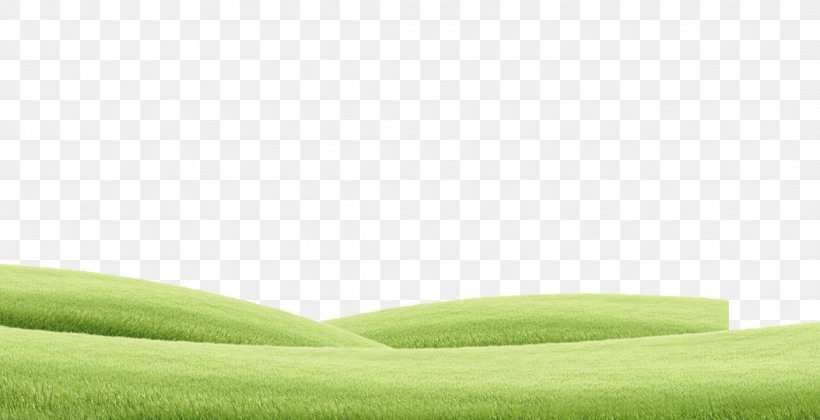 Lawn Green Grassland Angle Png 1054x540px Lawn Grass Grass Family Grassland Green Download Free