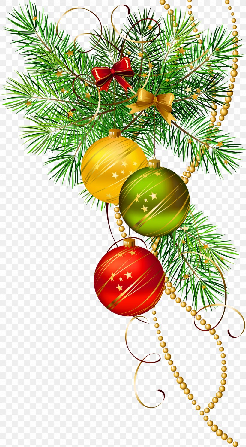 Christmas Ornament Icon Clip Art, PNG, 1800x3268px, Christmas, Ball, Branch, Christmas Decoration, Christmas Ornament Download Free