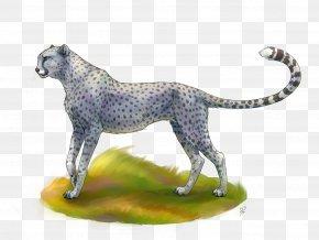 Cheetah - Maltese Dog Cheetah Cat Felidae Ocelot PNG