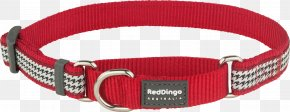 Red Collar Dog - Dog Collar Dingo Martingale PNG