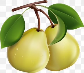 Pear Picture - Pear Fruit Salad Computer File PNG