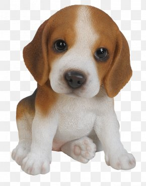 Cute Dog - Beagle Puppy Harrier Yorkshire Terrier Pug PNG