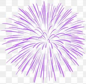 Purple Firework Transparent Image - Fireworks Clip Art PNG