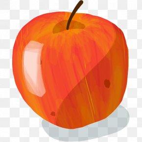 Apple - Jack-o'-lantern Apple King Of The Pippins Suntan Court-Pendu PNG