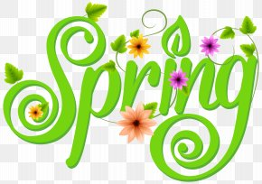Spring Decoration Text - Spring Typeface PNG