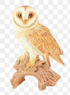 Animal Figure Bird Of Prey - Bird Cartoon PNG