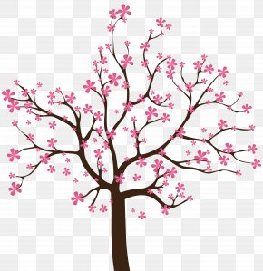 Cherry Blossom - Spring Tree Clip Art PNG