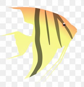 Angelfish Clipart - Clip Art PNG