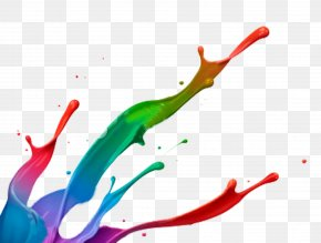Painting Photos - Paint Splash Color Clip Art PNG