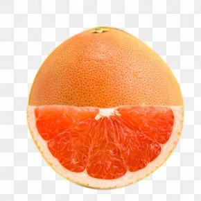 Boutique Grapefruit - Grapefruit Blood Orange Pomelo Tangelo Rangpur PNG