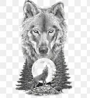 Sketch Animal Wolf - Gray Wolf Art In Motion Tattoo Studio Tattoo Artist Drawing PNG