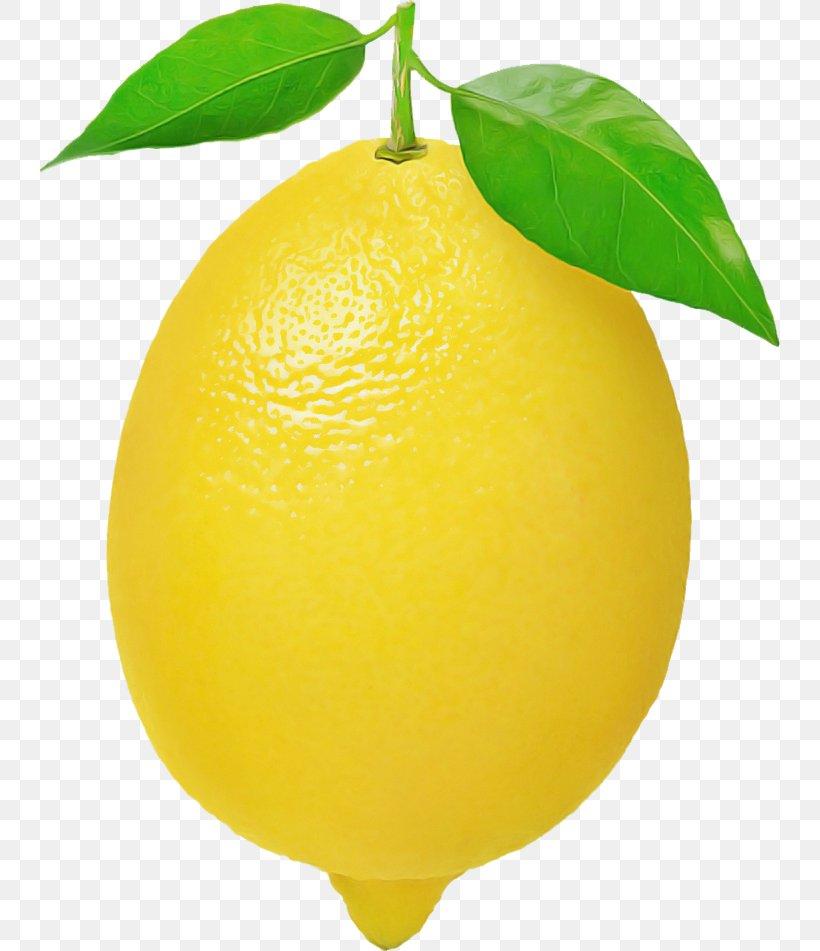 Lemon Citrus Yellow Fruit Sweet Lemon, PNG, 740x951px, Lemon, Citron, Citrus, Fruit, Leaf Download Free