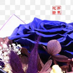 BLUELOVER Flower Blue Flowers - Blue Flower Euclidean Vector PNG