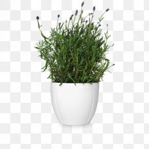 Flower Pot - Flowerpot Cachepot Rosendahl Earthenware Vase PNG